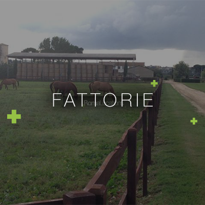 Location Fattorie
